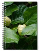 Noni Spiral Notebook