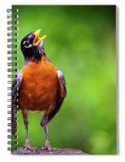 North American Robin In Song Spiral Notebook