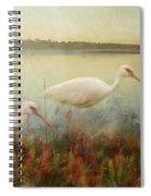 North Carolina Ibis Spiral Notebook