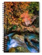 North Creek Fall Foliage Spiral Notebook