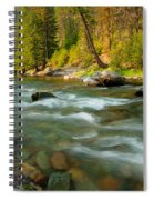 North Fork Of The St. Joe Spiral Notebook