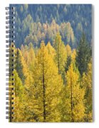North Idaho Gold Spiral Notebook