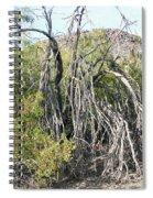 North Mountain7 Spiral Notebook