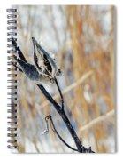 North Pond Prairie Grass Spiral Notebook