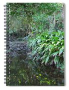 North Shore Forest Glade Spiral Notebook