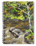 Northerm Stream Woodland Created By Richard T Pranke Spiral Notebook