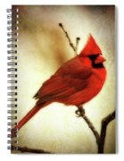Northern Cardinal Spiral Notebook