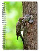 Northern Flicker Family Spiral Notebook