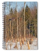 Northern Forests Ghost In-flight Spiral Notebook