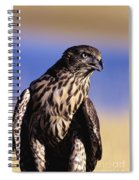 Northern Goshawk Spiral Notebook