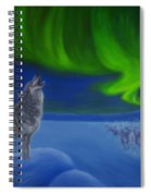 Northern Lights Night Spiral Notebook