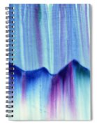 Northern Mountain Lights Spiral Notebook