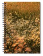 Northern Summer Spiral Notebook