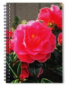 Not A Rose Spiral Notebook