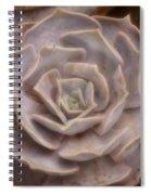 Not A Rose Spiral Notebook