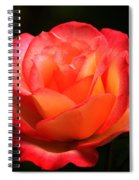 Not A Second Hand Rose Spiral Notebook