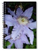 Rising Spirit Spiral Notebook