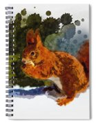 Not Much Goes On In The Mind Of A Squirrel Spiral Notebook