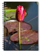 Not Yet In Bloom Spiral Notebook