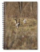 Nothing But White Tails Spiral Notebook
