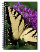 Nothing Is Perfect Spiral Notebook