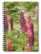 Nova Scotia Lupine Flowers Spiral Notebook