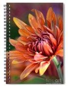 November Beauty Spiral Notebook