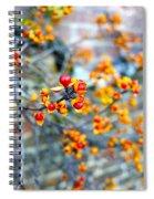 November Garden Wall Spiral Notebook
