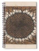 November, Julie The Like, 1917 Spiral Notebook