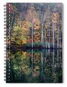 November Ripples Spiral Notebook