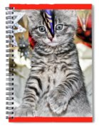 Now Where Did That Ornament Go I Just Saw It A Second Ago Spiral Notebook