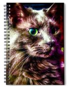 Nox Rules Revised Spiral Notebook