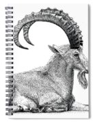 Nubian Ibex Spiral Notebook