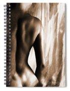 Nude 028r Spiral Notebook
