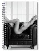 Nude Chair Spiral Notebook