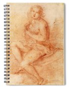 Nude Seated Woman Playing A Lute Spiral Notebook