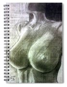 Nude Woman V Spiral Notebook