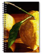 Nurse Beckys Lemons Spiral Notebook