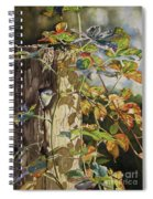 Nuthatch And Creeper Spiral Notebook