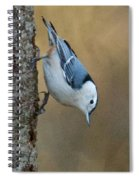 Nuthatch In Profile Spiral Notebook