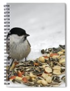 Nuts Said The Willow Spiral Notebook