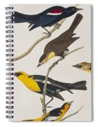 Nuttall's Starling Yellow-headed Troopial Bullock's Oriole Spiral Notebook