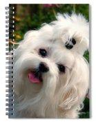 Nuttin' But Love Spiral Notebook