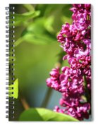 Nymph Named Syringa Spiral Notebook