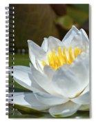 Nymphaeaceae.. Spiral Notebook