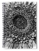 O Bw Spiral Notebook