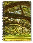 Oak Alley Tunnel Of Oaks Spiral Notebook