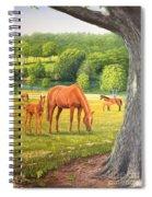 Oak And Chestnuts Spiral Notebook
