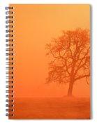 Oak At Sunrise Spiral Notebook