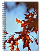 Oak Leaves 2 Spiral Notebook